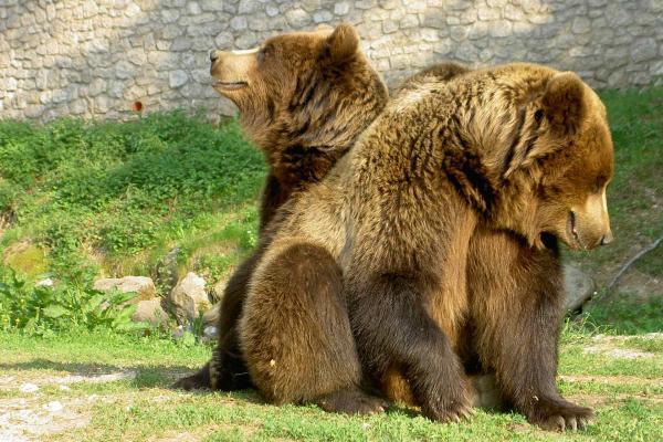 Spormaggiore Wildlife Park